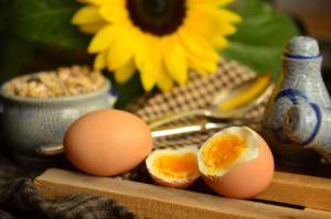 卵が発毛に効果的な理由とは?そのメカニズムを解説!