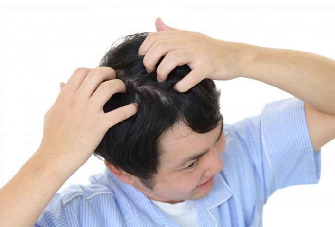 ヘアサイクルとは?季節ごとの発毛の違いは?