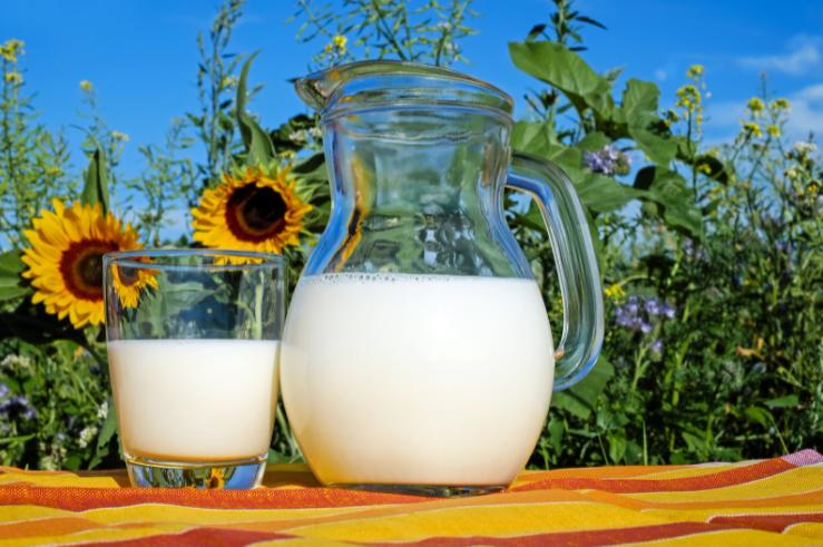 牛乳に発毛効果があると言われる理由は?栄養素と一緒に紹介!
