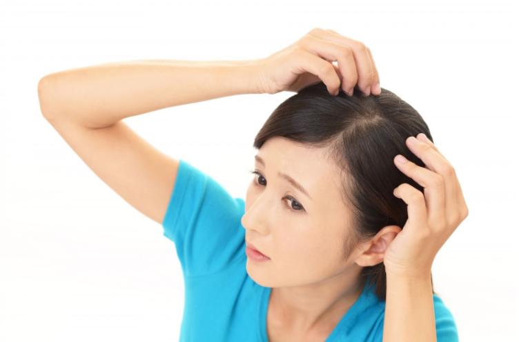 センブリエキスは発毛に効果的!おすすめの取り入れ方と注意点!