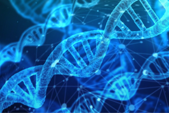 【発毛の真実】AGAは遺伝子検査で分かる?検査内容や受けられる場所は?