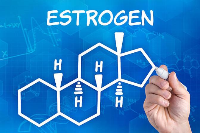 エストロゲンとは?減少すると女性の発毛に悪影響?