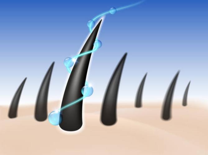 ケラチノサイトを活性化させて発毛を促すには?