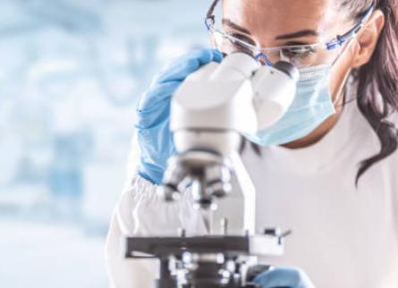 制御型T細胞を発毛治療に役立てる研究が進んでいる!