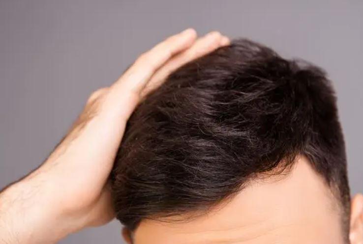 さいごに|フコイダンは天然の発毛成分!ぜひ日常生活に取り入れよう!